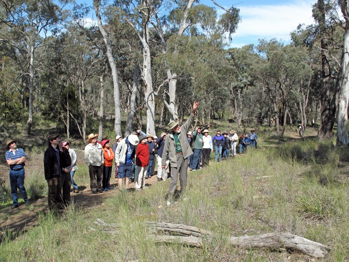 Ian Falconer leading a walk through the Aranda bushland